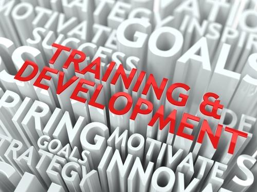 Procurement Training for the Public Sector